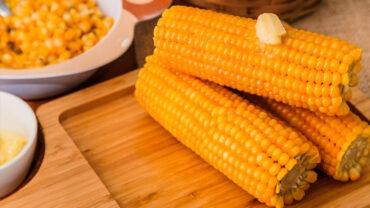 Milho Verde Cozido: Aprenda Como Fazer